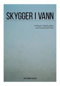 http://www.linebohmerlokken.com/files/gimgs/th-52_Skygger_vann_Page_01.jpg